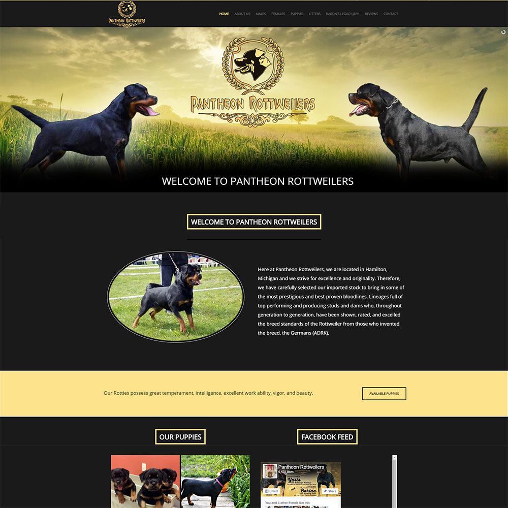 Home page for Pantheon Rottweilers designed by Luke Brokaw